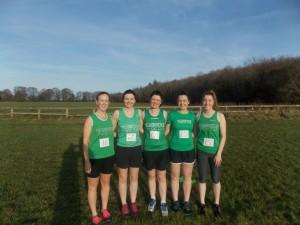 Newbridge Ladies Team