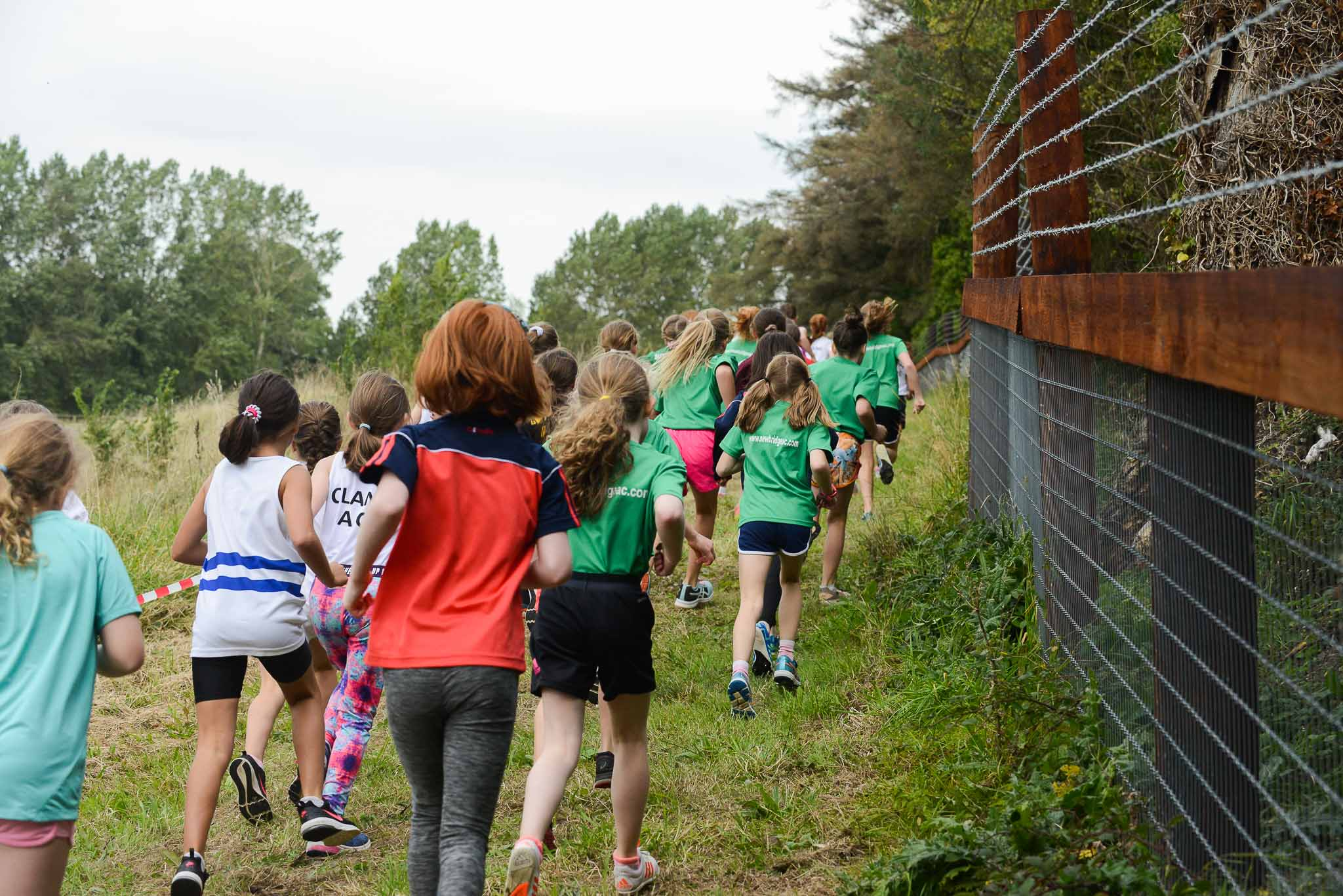 Juvenile Cross Country Season 2019
